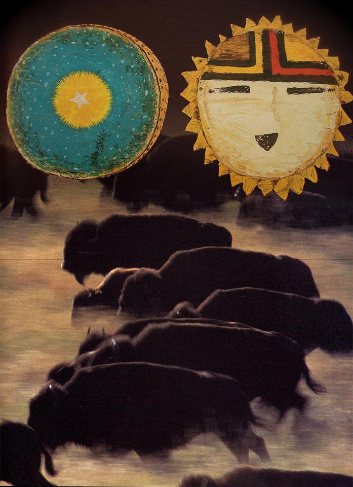spectacle bison bestiaire indien